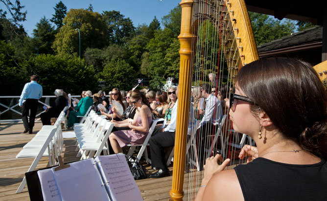 Harp at wedding. Playing as guests arrive.